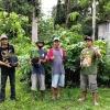 hari-menanam-pohon-ratusan-pegiat-lingkungan-lintas-komunitas-hijaukan-alas-simpenan