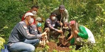 Peduli Lingkungan, Offroader dan Komunitas Trail Tanam 500 pohon di Gunung Klotok
