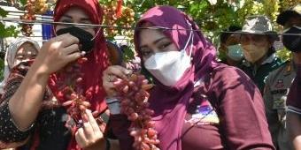 Wisata Kampung Anggur Desa Kedungmaling Diresmikan Bupati Mojokerto