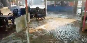 Banjir Rob Terjang Pantai Tambak Rejo di Blitar Selatan