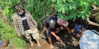 BPCB: Struktur Bata Kuno di Kota Blitar Tunjukkan Adanya Aktivitas Masa Lalu di Lokasi Temuan