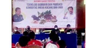 Kementan Gelar Bimtek untuk Tingkatkan Kualitas Ekspor Ubi Jalar di Mojokerto