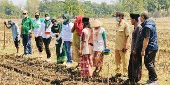Perluas Dampingan, Pertani HKTI - Biotani Sasar Petani Binaan Ponpes