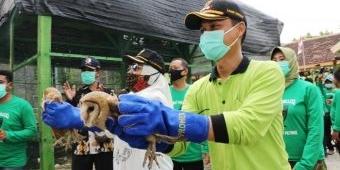 Bupati Bojonegoro Dorong Petani Pelihara Burung Hantu untuk Basmi Hama Tikus