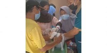 Peringati Hari Rabies Sedunia, Diskaneswan Lamongan Gelar Vaksinasi Hewan Gratis