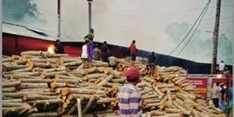 Korsleting Kena Oli, Tempat Pengolahan Kayu di Blitar Terbakar, Kerugian Capai Ratusan Juta Rupiah