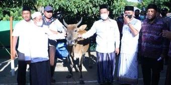 Gelar Maulid Nabi SAW di Pulau Bawean, Bupati Gresik Sumbang 3 Ekor Sapi