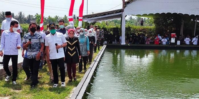 budi-daya-ikan-koi-pakai-sistem-internet-di-blitar-mendes-pdtt-ini-satu-satunya-di-indonesia